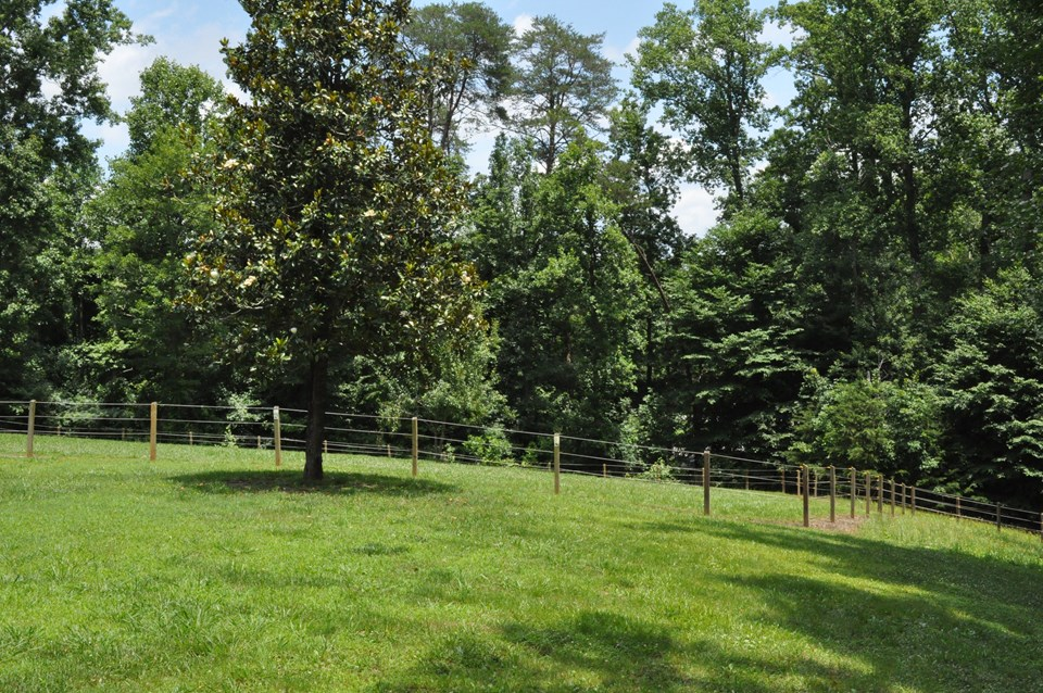 paddock and fencing this fencing could be moved to expand the grazing area.