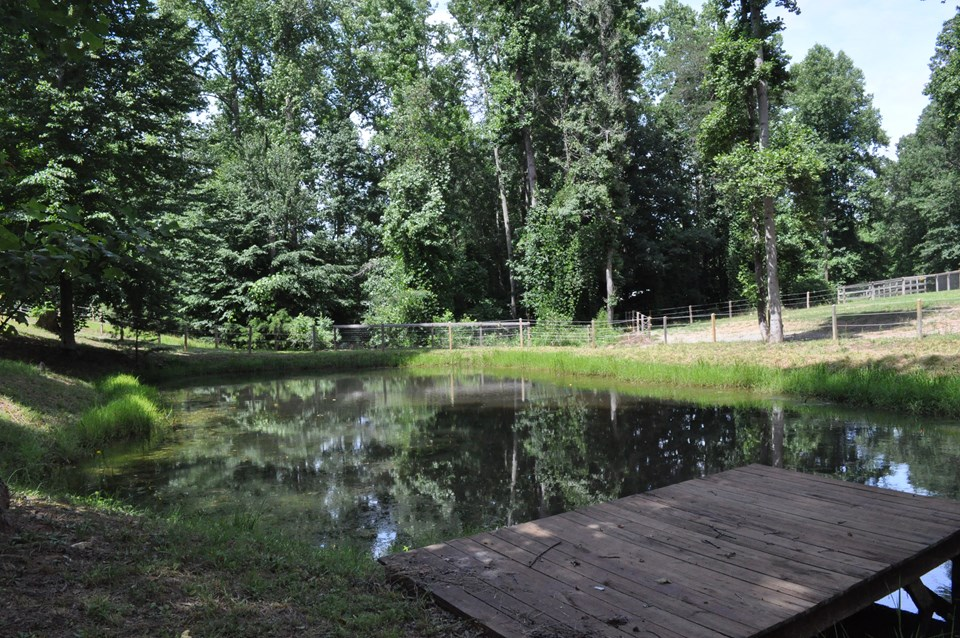 pond with dock beyond the pond is a run that leads to the additional dry lot that runs across the front of the property.